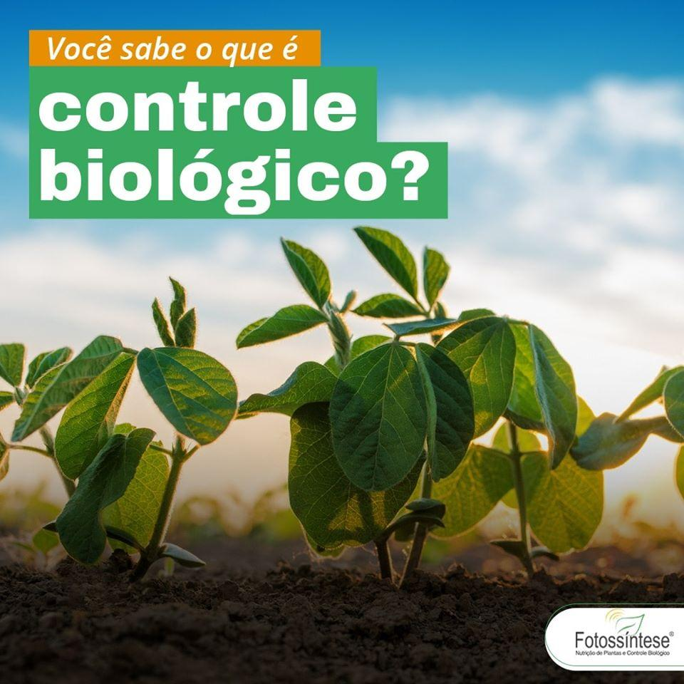 Você sabe o que é Controle Biológico?
